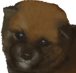 プレビュー(犬)